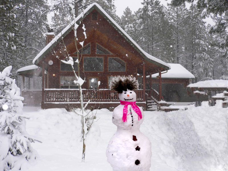 pierson rentals rental arizona uncategorized mountain pinetop cabin cabins white